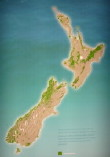 New Zealand Forest after European settlement