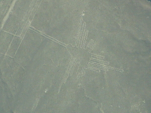 One of the shapes of the Nazca lines