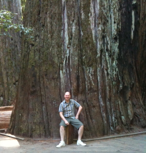 The Giant Tree in Humboldts National Park